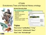 ethan evolutionary trees and natural history ontology