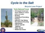 cycle to the salt bicycle lane project