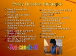 essay question strategies