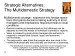strategic alternatives the multidomestic strategy