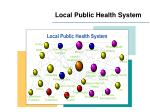 local public health system