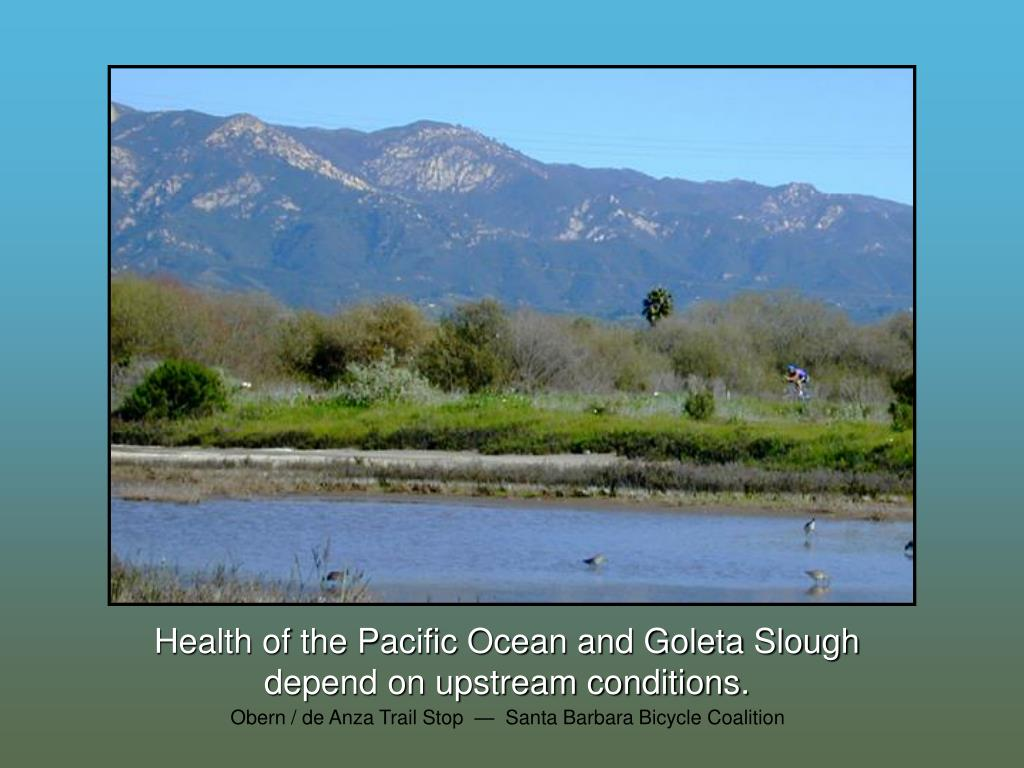 Health of the Pacific Ocean and Goleta Slough