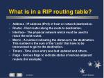 what is in a rip routing table