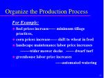 organize the production process19