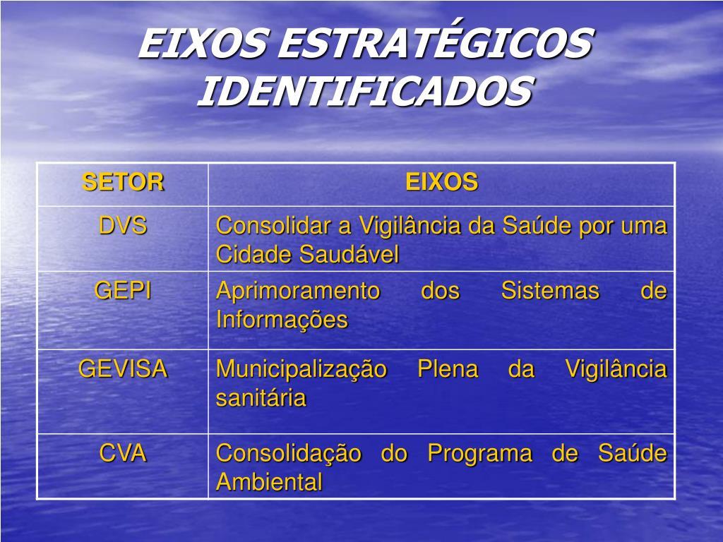 EIXOS ESTRATÉGICOS IDENTIFICADOS