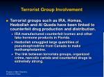 terrorist group involvement