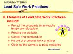 important terms lead safe work practices
