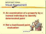 important terms visual assessment