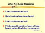 what are lead hazards