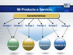 mi producto o servicio