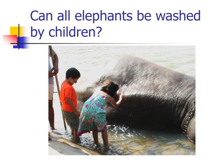 Can all elephants be washed by children
