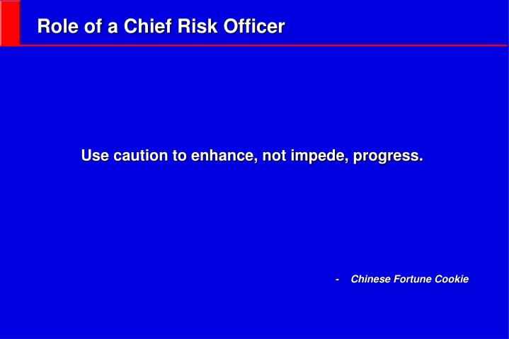 Role of a Chief Risk Officer