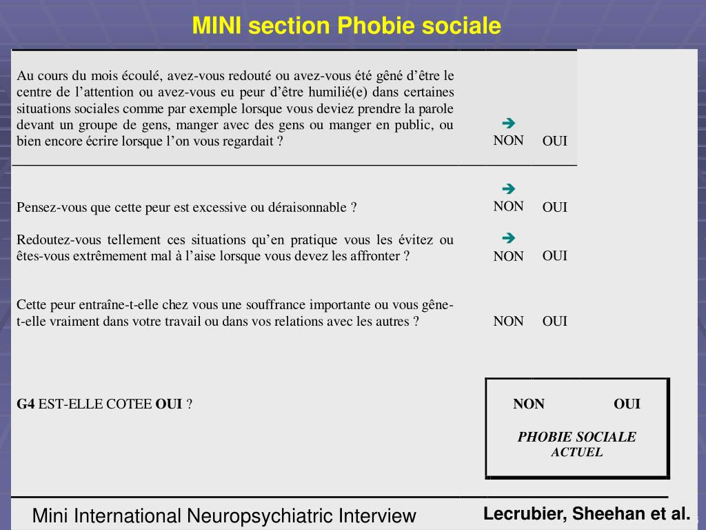 MINI section Phobie sociale