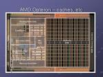 amd opteron caches etc