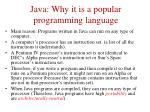 java why it is a popular programming language