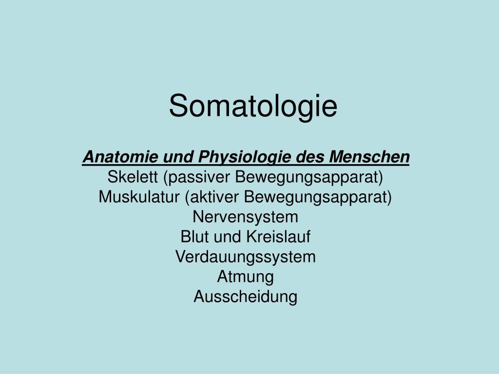 PPT - Somatologie PowerPoint Presentation - ID:508378