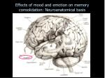 effects of mood and emotion on memory consolidation neuroanatomical basis