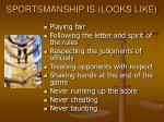 sportsmanship is looks like
