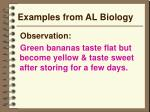 examples from al biology