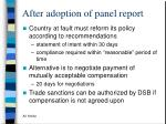 after adoption of panel report