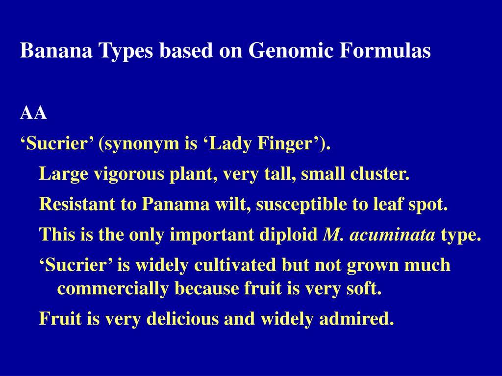 Banana Types based on Genomic Formulas