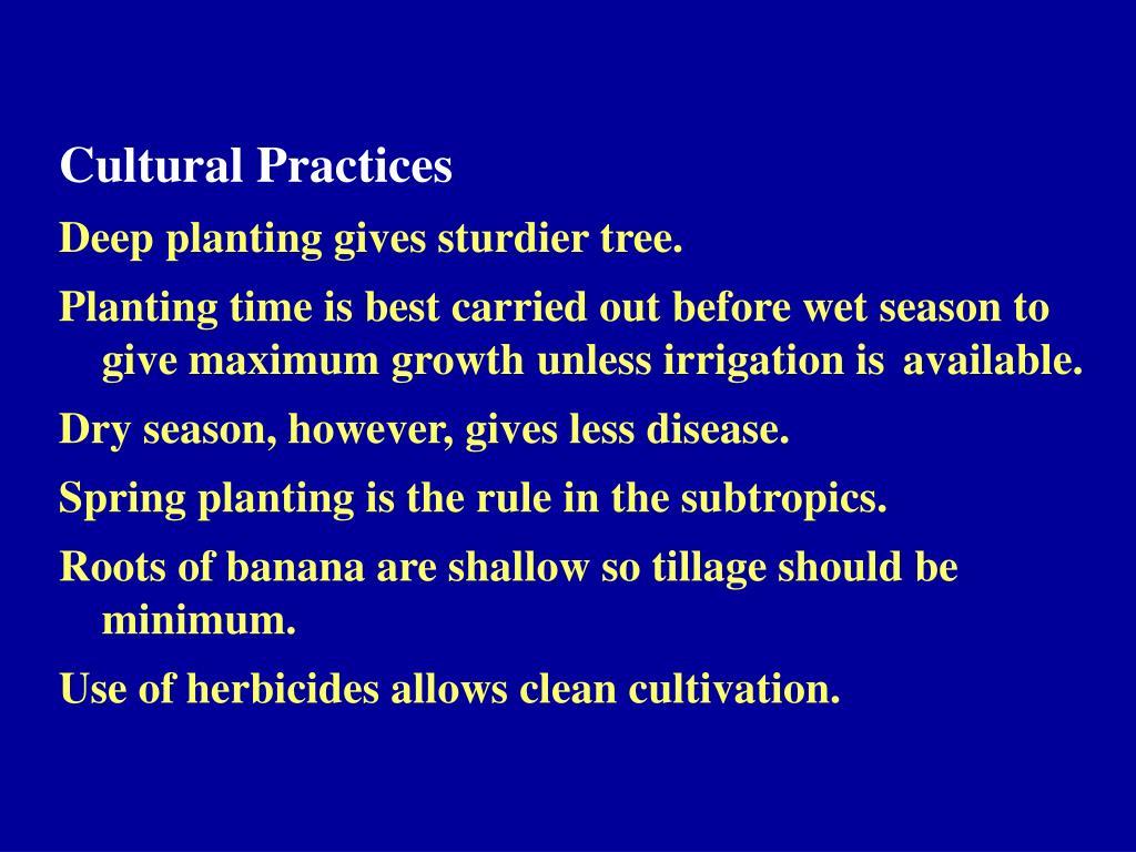 Cultural Practices