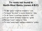 tiv roots not found in north west bantu zones a b c