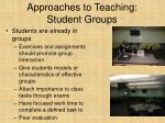 approaches to teaching student groups