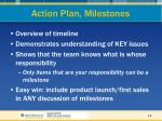 action plan milestones
