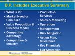 b p includes executive summary