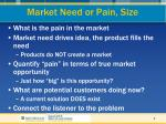 market need or pain size