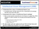 intellectual asset management iam