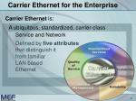 carrier ethernet for the enterprise