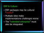 erp culture