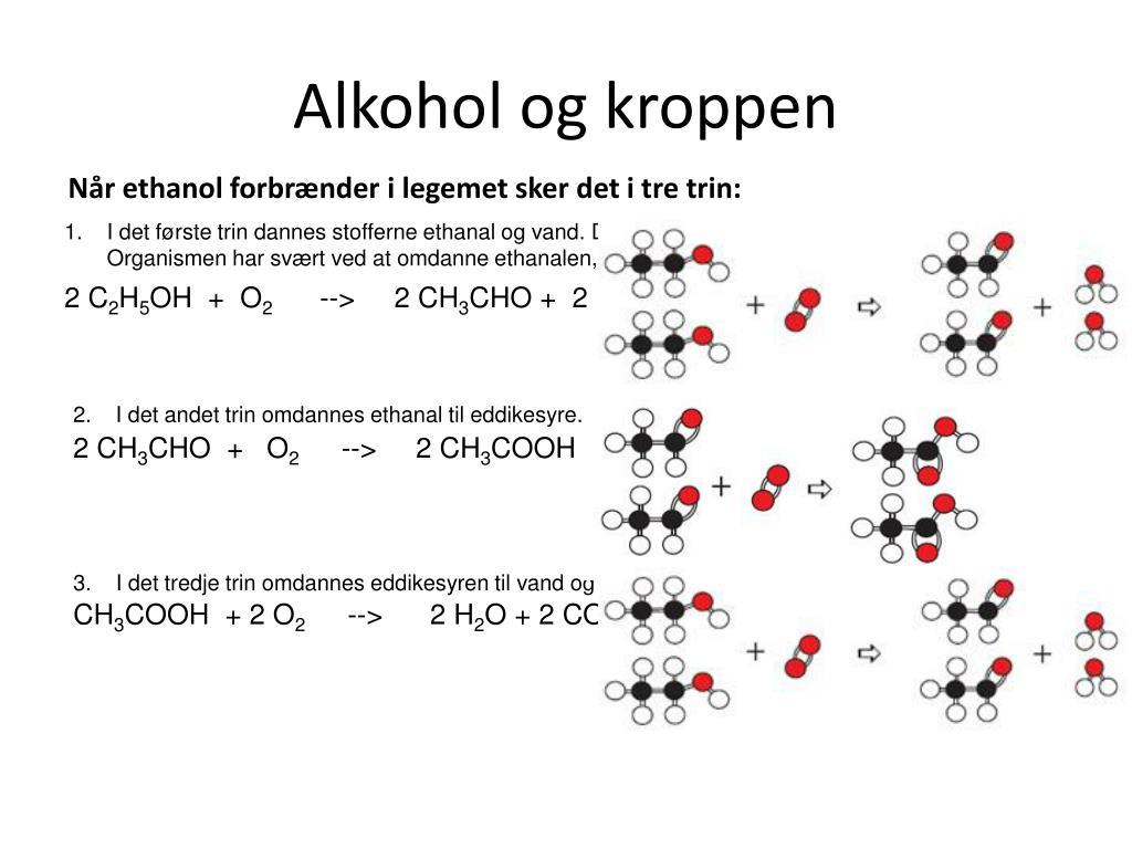Alkohol og kroppen