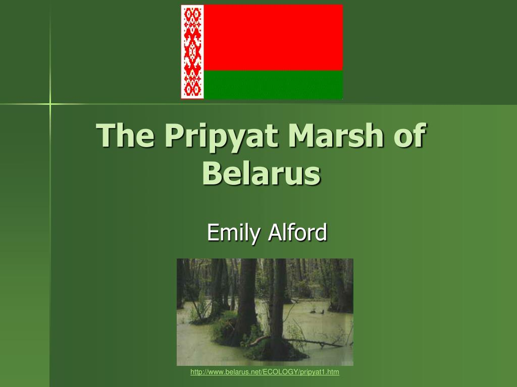 the pripyat marsh of belarus l.