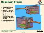 hg delivery system