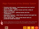 major functions of the skeletal system