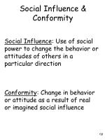 social influence conformity