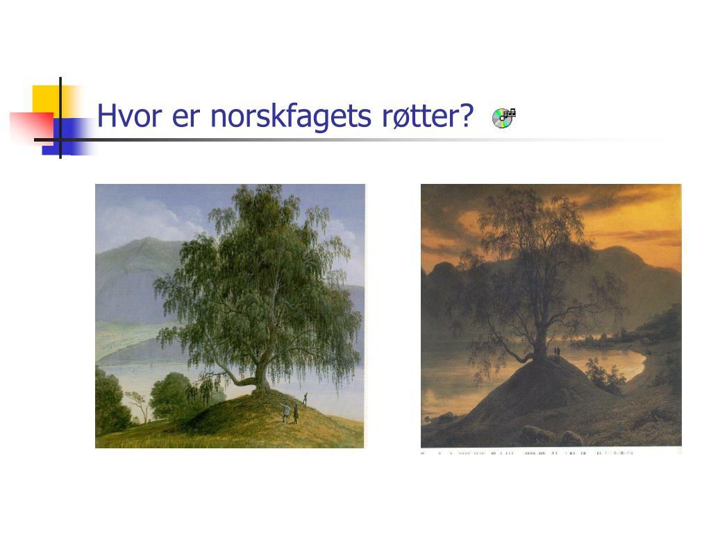hvor er norskfagets r tter l.