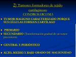 2 tumores formadores de tejido cartilaginoso condrosarcoma