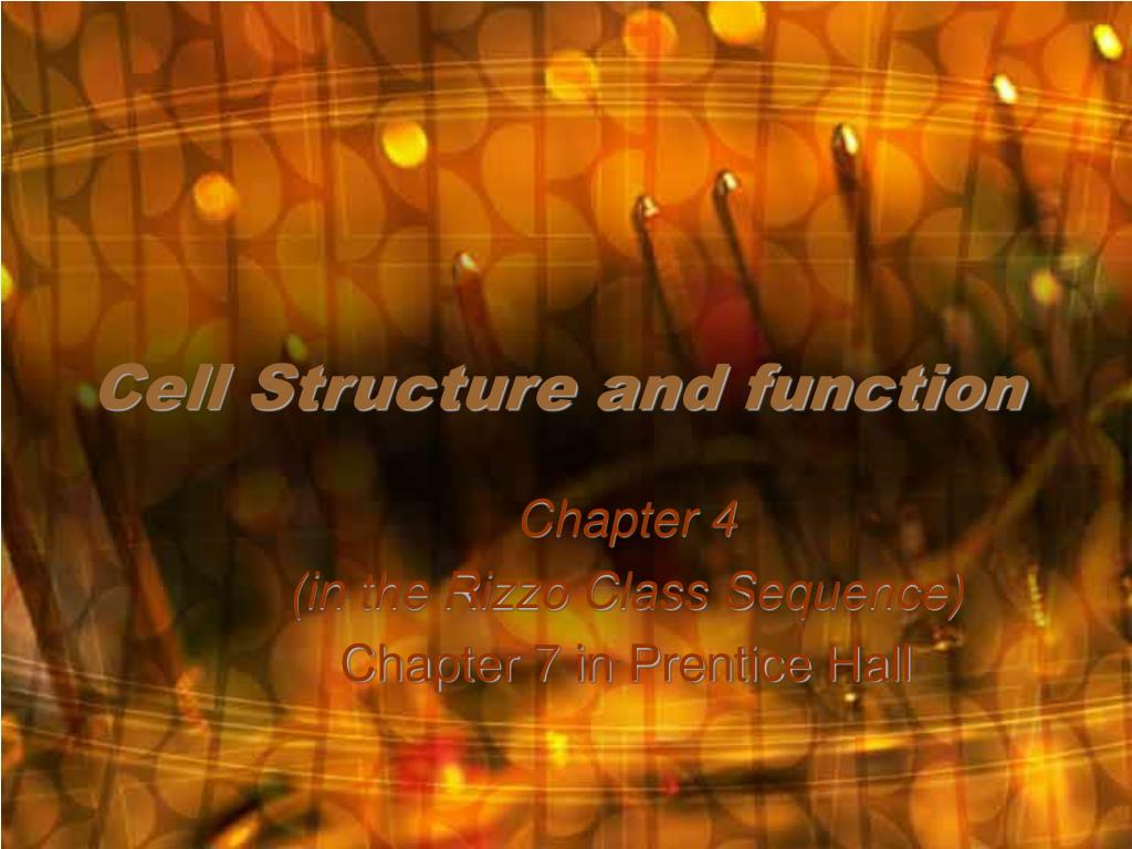 cell structure and function l.