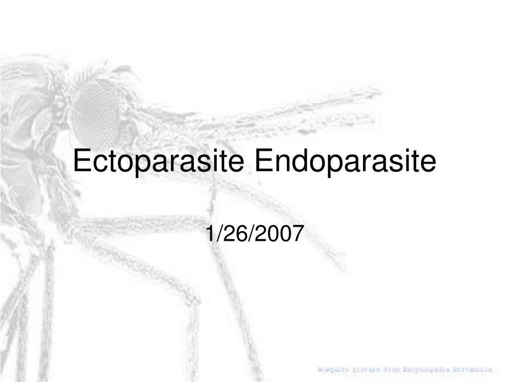 ectoparasite endoparasite l.