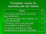 principales causas de insatisfacci n del cliente