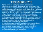 trombocyt