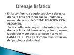 drenaje linfatico