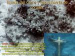 rueda del carro y eje cubierta de corales