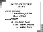systemes experts flous