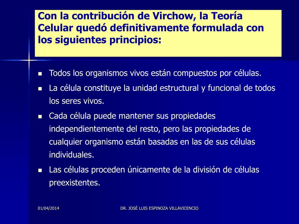 Con la contribución de Virchow, la Teoría Celular quedó definitivamente formulada con los siguientes principios: