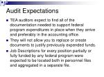 audit expectations